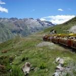 Artouste petit train