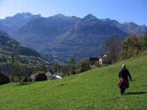 Ardiden_massif_pasture