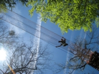 High Ropes web