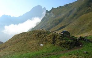 S_Landscape_bergerie-vallee-ossau