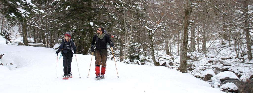 Snowshoe slider