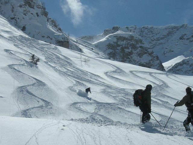 Skiing the powder