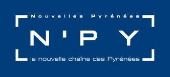 n-py logo