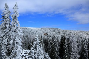 vitosha_winter