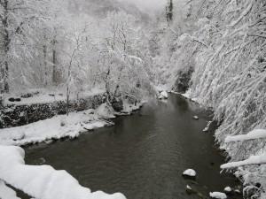 River Luz