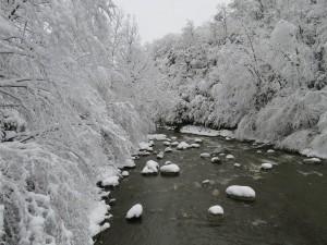 River Luz1