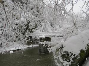 River Luz2