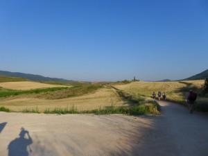Plain_camino