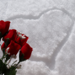 roses-heart-snow