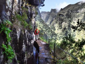 S_Landscape_path_Maderaza