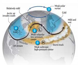 Polar_vortex